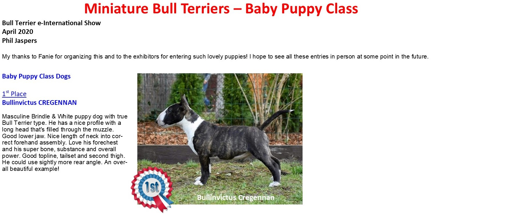 MBT Baby Puppy Class 1